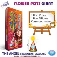 Flower Pots Giant/Ashoka [10 Pcs]